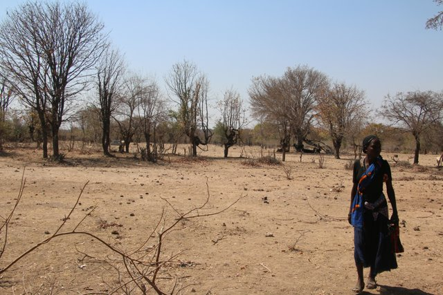 Drought in the south of Angola